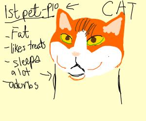 First pet PIO