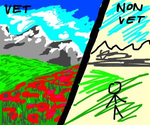 vet vs non-vet description of drawing
