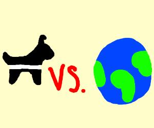 Oreo dog vs. The world