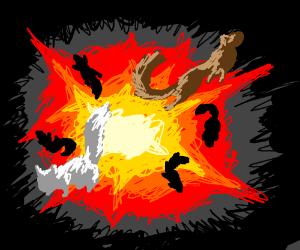 Squirrel explosion