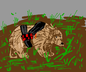 Bear explodes