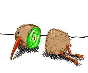 A kiwi that is also a kiwi ;)