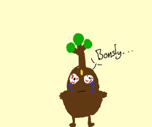 Bonsly had some eye surgery
