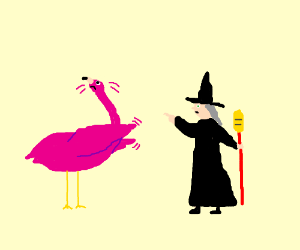 Witch and flamingo disagree