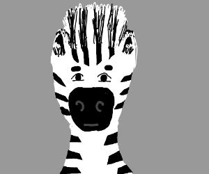 Unamused Zebra