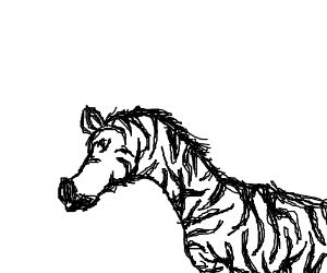 Paper Zebra