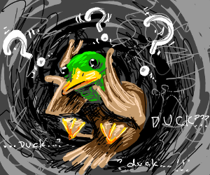 Duck questions it's existence