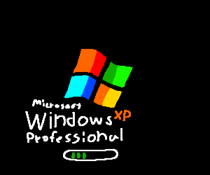 Microsoft Windows XP Profenssional loading
