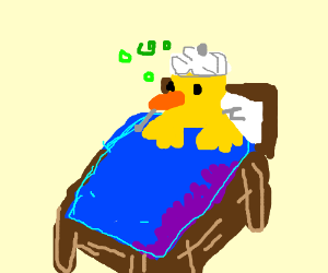 sickly duck in bed