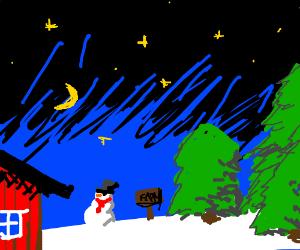 Christmas tree farm at night