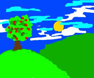 An apple tree on a green hill