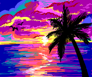 sunset in tropical paradise; palm trees