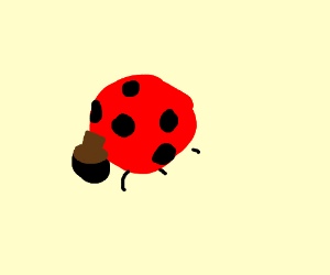 Lady bug wearing a brown hat