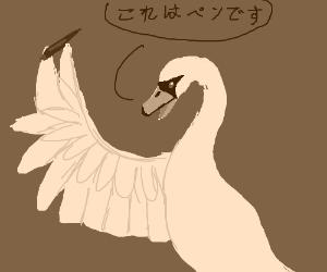 Swan speaks Japanese