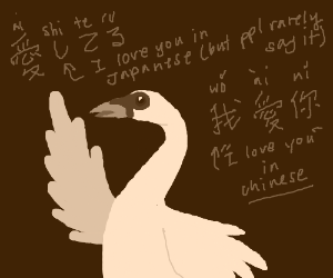 Swan translating I love you from Japanese