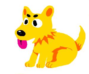 Good Doge!