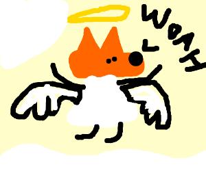"Angel Fox: ""WOAH!"""