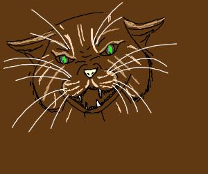 A Gorgeous Wild Cat <3