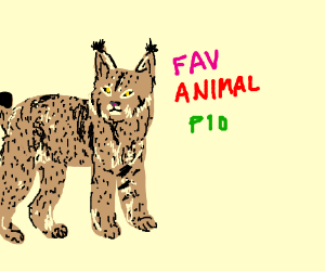 Draw your favorite animal PIO