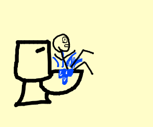 I fell into the toilet
