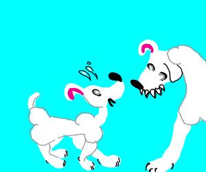 Bone dog scared by bigger bone dog