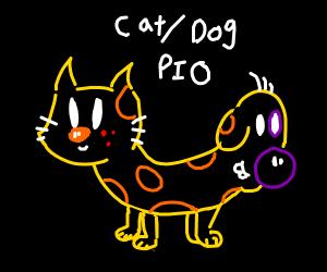 Cat/Dog PIO