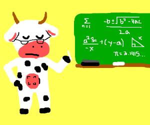 cow teaching math