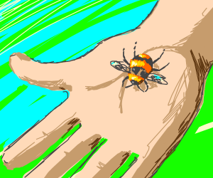Bee landing on a person's hand