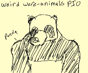 Weird were animals, Pio please