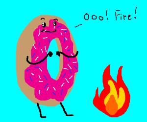 Donut found a fire