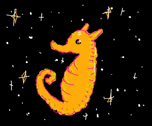 Seahorse in space