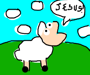 """Sheep screaming """"Jesus!"""""""