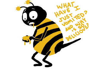 Bee notice that he make honey