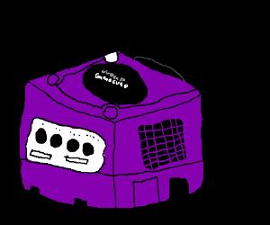 A Nintendo Game Cube