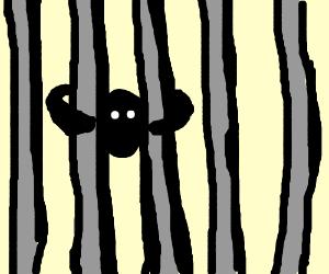 dude in jail