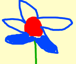 flower with blue petals and red middle