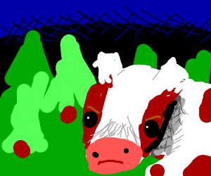 Cow in forest at night
