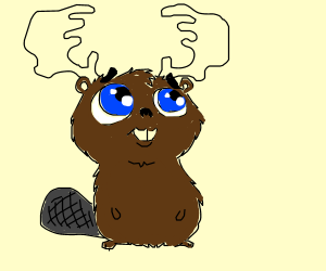 Adorable beaver with moose antlers