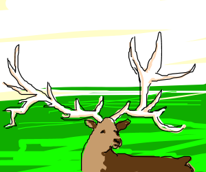 Deer with obnoxiously big antlers