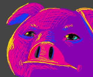 Purple Pig has bloodshot eyes