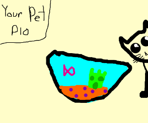 Your Pet PIO