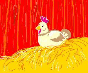 Chicken (PIO)