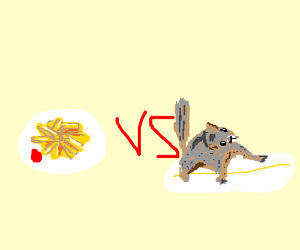 french fries vs squirrel on surfboards