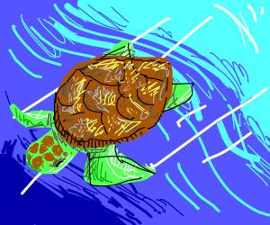 turtle swimming underwater(cool drawing btw)