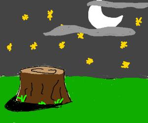 stump near to a night sky