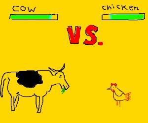 COW VERSES CHICKEN!!!!!!!!!!