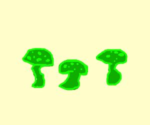 Radioactive Mushrooms