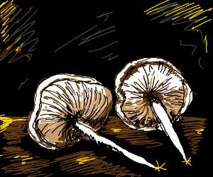 sharp mushrooms