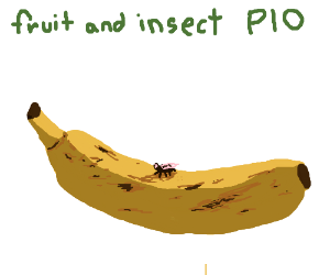 Fruit and Insect PIO