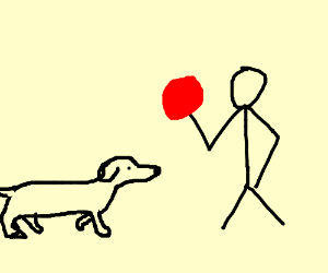 A dog waiting for someone to throw a ball